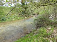 Achaia - Tripotama - Silver Fountain - River