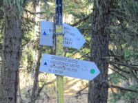 Achaia - Kalavrita - Route from Souvardo to Kalavrita Ski Resort - Hiking Paths