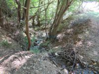 Achaia - Kalavrita - Vrachni - Small Creek