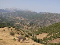 Achaia - Off-Road path to Drosato