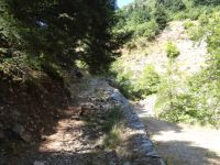 Achaia - Agrabela - Mountain Path