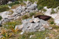 Dodecanese - Chalki - Well