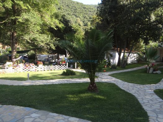 Grass and trees at the camping Akti Oneirou in Sithonia