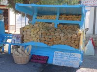 Dodecanese - Lipsi - Natural Sponges