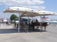 Argosaronikos - Spetses - Horse Coaches Terminal at Dapia